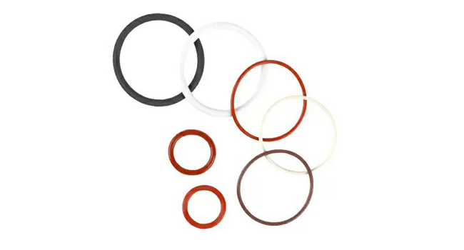 Sanitary Gaskets & O-rings
